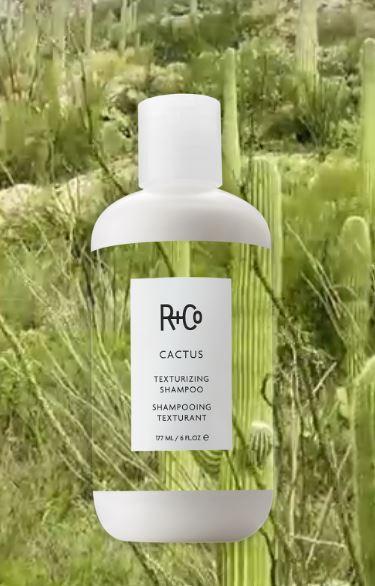 Cactus Texturizing Shampoo di R+Co