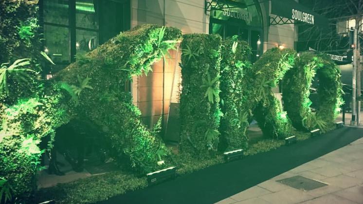 Recensione Green Me Kiko Milano, catalogo, foto e prezzi