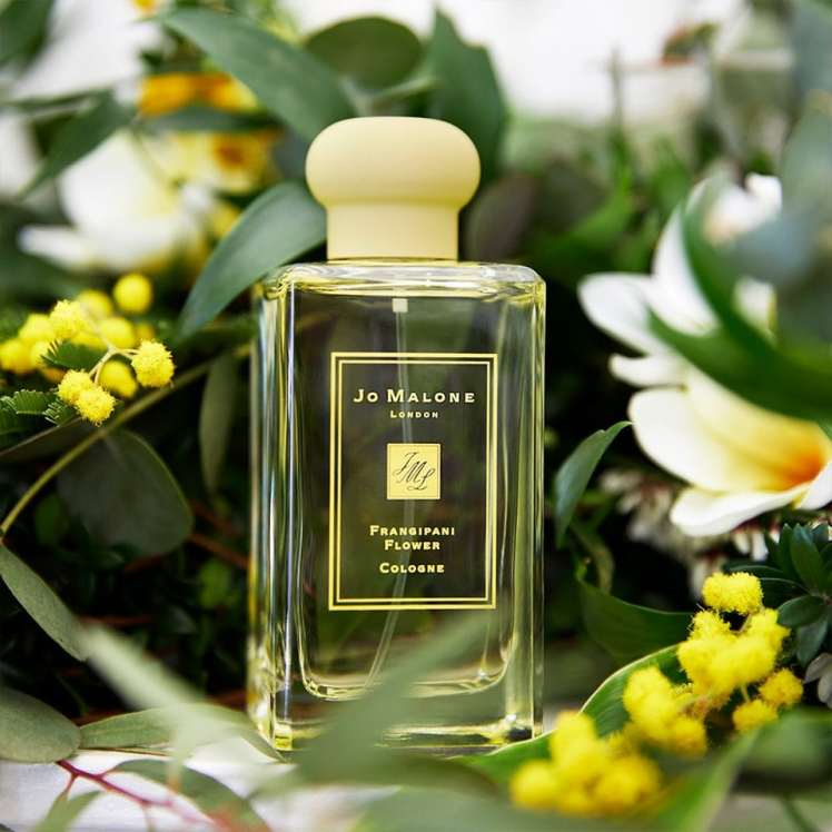 Frangipani Flower Cologne Jo Malone London